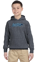 Lake Forest Dolphins Pullover Hoodie